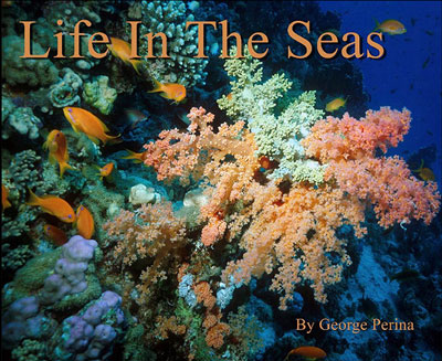 Life In The Seas Book Cover